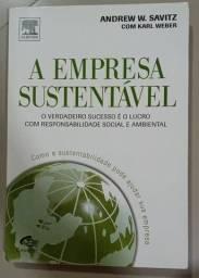 A empresa sustentável