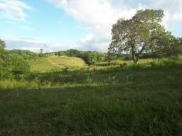 Propriedade Rural em Igarassu