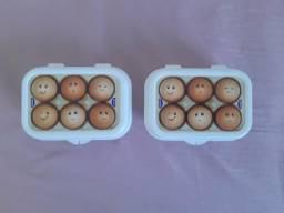 Porta Ovos Novo