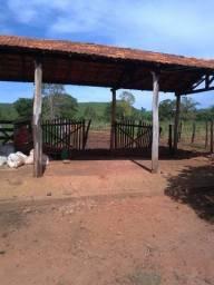 Fazenda com 280 hectares no centro-norte de Minas Gerais