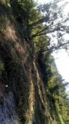 Terreno praia do Ervino 20 mil