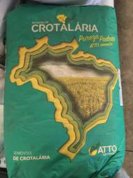 Crotalaria spectabilis 25 kg