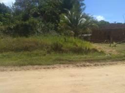 Oportunidade .Terreno frente de rua na ilha