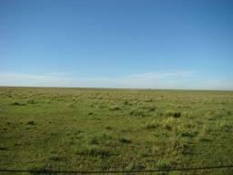 Compra-se área de terra para cultivo de soja e parte p/ pecuária