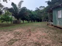 Vendo Fazenda