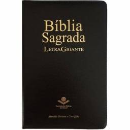 Bíblia sagrada com a letra gigante: LEIA A DESCRIÇÃO ??
