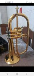 Título do anúncio: fluguelhorn