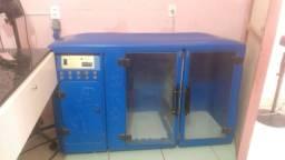 Máquina secadora de cães pet shop