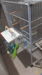 Vende-se Gaiola de Pássaro , Calopsita, Periquito