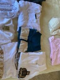 Lote roupas selecionadas femininas, de marcas a maioria nova Numeração G super lindas.