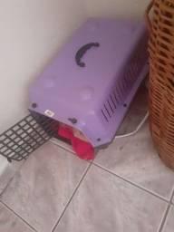 Caixa transporte para gato G