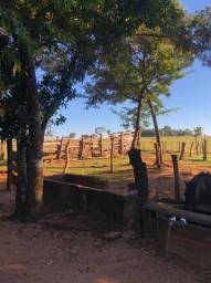 Vendo Chácara em Jaraguari - 55 km de Campo Grande