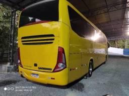 G7 amarelo lindo