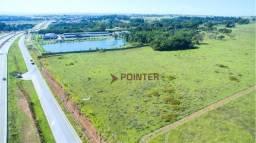 Área à venda, 35776 m² por R$ 4.114.240,00 - Fazenda Santa Rita - Goiânia/GO