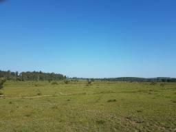 80 hectares para lavoura em São Jerônimo-RS