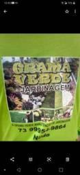 Jardinagem manutenção
