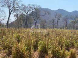 Título do anúncio: Fazenda 2.000 hectares em Cáceres Mato Grosso