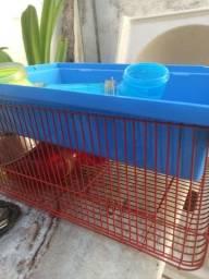 Gaiola para hamster / esquilo