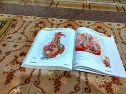 Livro de anatomia Netter