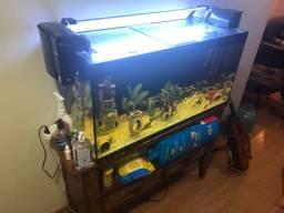 Aquario com aparador