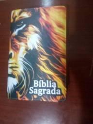 Bíblia com Índice de Esboços Temáticos e Harpa