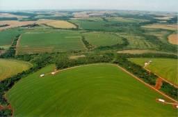 Título do anúncio: Sitios, chacaras, fazendas! FL crédito rural