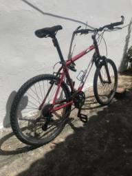 Bicicleta mtb gary fisher relíquia