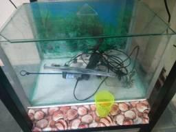 Aquarios com bancada