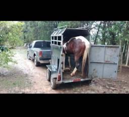 Vendo trailer um cavalo documentado 5.900