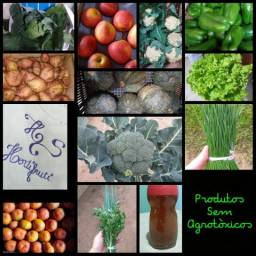 Produtos Sem Agrotóxicos