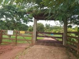 Fazenda região Indiara, 80 alqueires, boa negociação