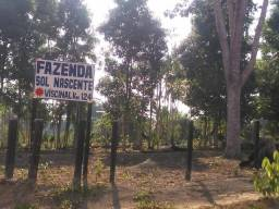 Terreno km124 vende-se