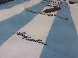 "Camisa Grêmio ""alma castelhana"""