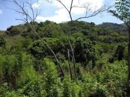 Área de 87.000 m² com RGI - Ilha de Guaratiba