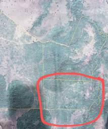 Vende-se Fazenda 23 hectares