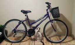 Bicicleta Runner sx Fischer