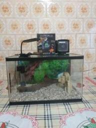 Aquario 50 litros