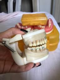 Vendo Manequins Odontológicos. Os dois por 150!