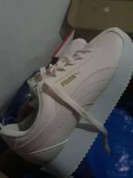 Sapato Novo Puma Original
