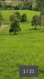 Fazenda são Sebastião 2.380 Tarefas .