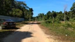 Últimos terrenos com Igarapé no Paricatuba a 300 metros do asfalto