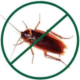 Dedetização contra baratas
