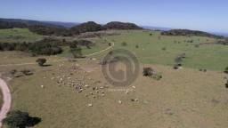 Fazenda na região de são vicente, 400 ha