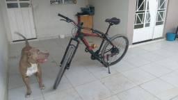 Bicicleta Hope aro 29