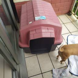 Casa de cachorro número 4