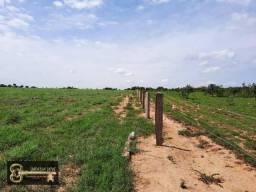 Fazenda Divinópolis -TO 586 Alqueirão (2.836 ha) plana uma verdadeira MESA!