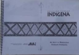 Apostila - Educação escolar indígena: As leis e a educação escolar indígena.