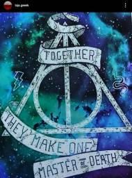 Placa Harry Potter 13x 9