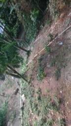 Vendo um terreno em Mangaratiba