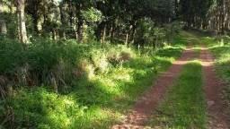 Terreno 6 hectares em Ponte Serrada